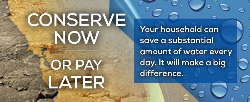 Conserve Now or Pay Later