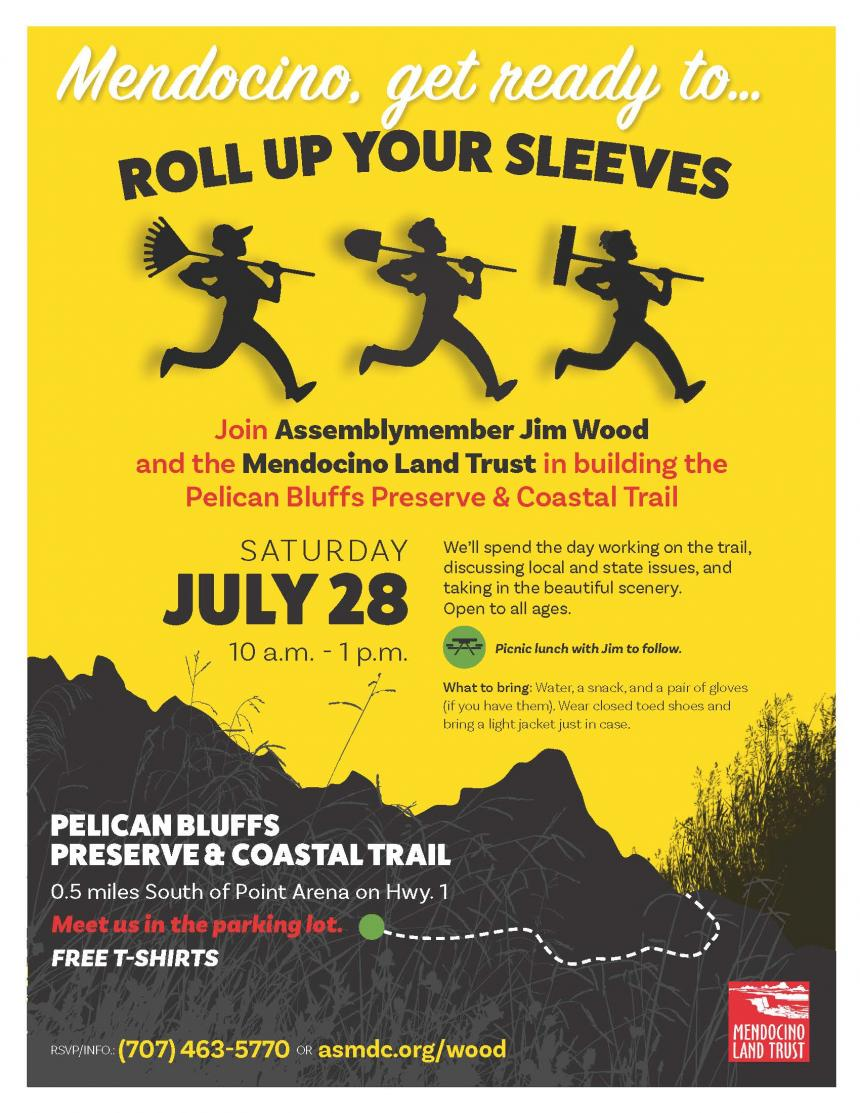 Roll Up Your Sleeves - Mendocino - Flyer